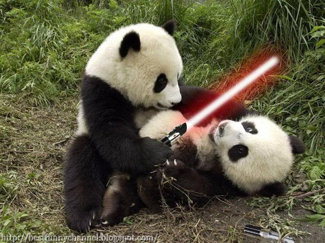 Pandas with Light Sabers