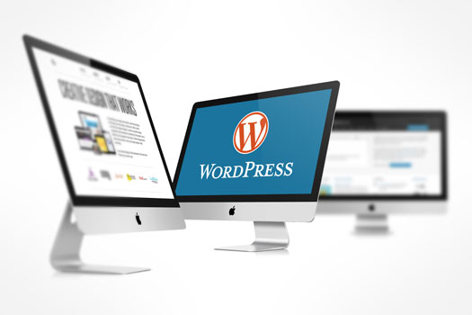 WordPress SEO for Business